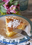 Coconut buttermilk Pie Stock Photography