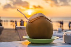Coconut in the cafe at sunset, Bali Indonesia stock photo