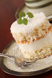 Coconut cake Stock Image