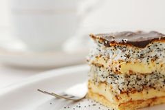 Coconut cake. With poppy-seed Royalty Free Stock Image