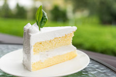 Coconut cake Royalty Free Stock Image