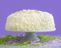 Coconut Cake for Easter on Purple Background. Yummy coconut cake with purple background for sharing with family on Easter holiday Royalty Free Stock Photos