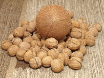 Coconut and calnuts.Background. Stock Photos