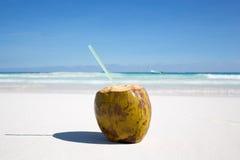 Coconut on Caribbean beach Tulum Mexico Stock Photos