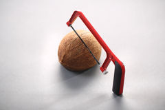 Coconut with a chainsaw Stock Photos
