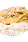 Coconut chicken with rice Royalty Free Stock Photo