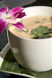 Coconut chicken soup Royalty Free Stock Photo
