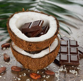 Coconut and chocolate Royalty Free Stock Photos