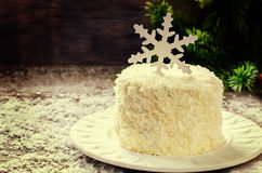 Coconut chocolate cake with cream cheese Stock Image