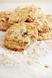 Coconut-chocolate chip cookies Stock Image