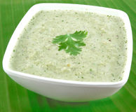 Coconut Chutney Royalty Free Stock Image