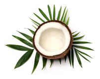 Coconut close up Stock Photo