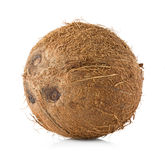Coconut close-up isolated on white Royalty Free Stock Photo