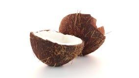 Coconut stock footage