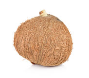 Coconut closeup on white background Royalty Free Stock Image