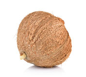 Coconut closeup on white background Royalty Free Stock Images