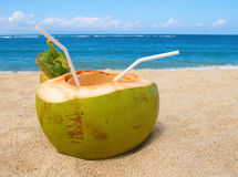 Coconut cocktail Royalty Free Stock Image