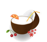 Coconut cocktail. Vector Illustration of  Coconut cocktail Stock Photography