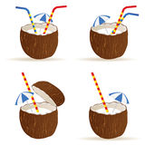 Coconut cocktail art color vector Stock Photos