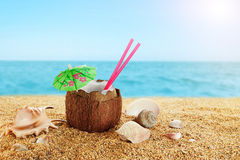 Coconut cocktail at the beach. Shells Royalty Free Stock Images