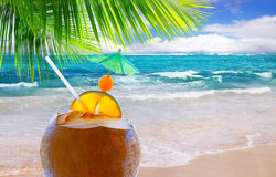 Coconut cocktail on Caribbean beach. Royalty Free Stock Photography