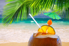 Coconut cocktail on Caribbean beach. Pretty and scenic beach features white sand, aquamarine aquarium water and blue sky with white clouds.Coconut cocktail on Stock Image
