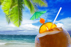 Coconut cocktail on Caribbean beach. Pretty and scenic beach features white sand, aquamarine aquarium water and blue sky with white clouds.Coconut cocktail on Royalty Free Stock Image