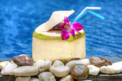 Coconut cocktail Royalty Free Stock Photos