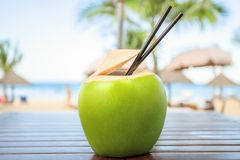 Coconut with cocktail drinking straw Stock Photography