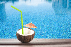 Coconut cocktail Stock Image