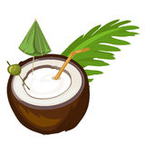 Coconut cocktail with straw, umbrella and olive Stock Images