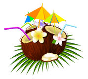 Coconut cocktail. Cocktail coconut. Tubules drinking coconut. Umbrellas for drinks in coconut. Three coconuts semi cut stock illustration