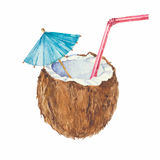 Coconut cocktail   on a white background.Vector, waterco Royalty Free Stock Photos