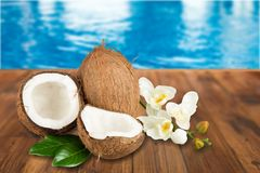 Coconut. Coco Fruit Leaf Green Nut Isolated Royalty Free Stock Photos