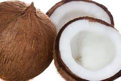 Coconut. Stock Photos