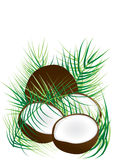 Coconut and Coconut Leaves_eps Stock Photo