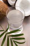 Coconut and coconut water Royalty Free Stock Photo