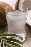 Coconut and coconut water Stock Image