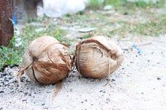 Coconut. S on the urban street Royalty Free Stock Photos