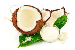 Coconut cocos with cream and green leaves Stock Images