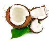 Coconut cocos with green leaf. Isolated on white background Stock Image