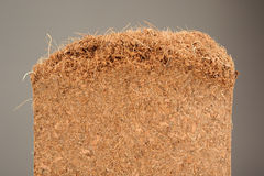 Coconut Coir Close-Up Stock Image