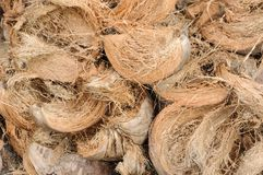 Coconut Coir Husk on back ground Stock Photos