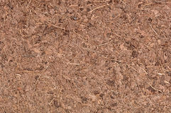 Coconut Coir Macro Royalty Free Stock Photo