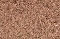 Coconut Coir Macro. A macro of coir (ground coconut shell fibers), a renewable resource (peat moss alternative). 12MP camera Royalty Free Stock Photo