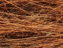 Coconut Coir macro Royalty Free Stock Photo