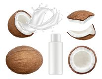 Coconut collection. Fresh tropical coco fruit with milk vector nature coconuts realistic illustrations. Coconut half fruit, food ingredient nutrition vector illustration