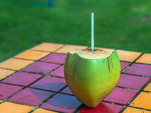 Coconut. On the color table - Brazil Royalty Free Stock Images
