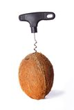 Coconut. Conceptual image of an open coconut with corkscrew Royalty Free Stock Images
