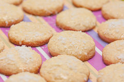 Coconut cookies. Royalty Free Stock Images